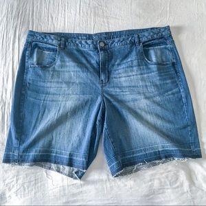 Lane Bryant Denim Shorts